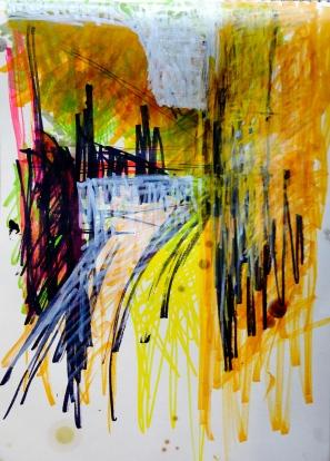 CAROL DAVIS: Drawing in the Rough